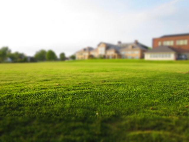 grasmaaier tips